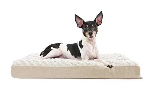 Furhaven Pet Dog Bed | Deluxe Memory Foam Ultra Plush Mattress Pet Bed for Dogs & Cats, Cream, Medium by Furhaven Pet