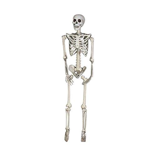 165CM Halloween Skeleton- Full Body Halloween Skeleton for Best Halloween (Halloween Picters)