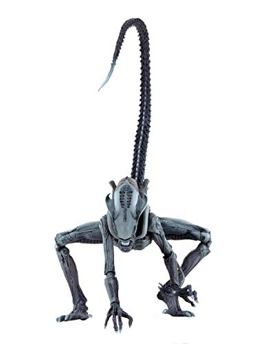 NECA - Aliens vs Predator (Arcade Appearance) - 7 Scale Action Figures - Arachnoid