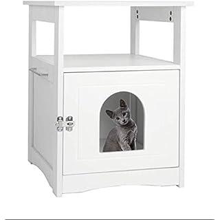 Best Cat Box