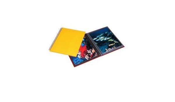 Amazoncom Print File Wire Bound Yellow Lizard Album Holds 24 8x10
