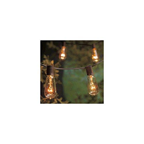 Outdoor String Lights Smith Hawken in US - 5