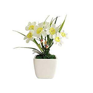 Jungles Ceramic Potted Plant, Innovative Small Fresh Narcissus Eternal Flower Artificial Flower Home Office Hotel Decoration Grass Arrangements Tabletop Decoration 74