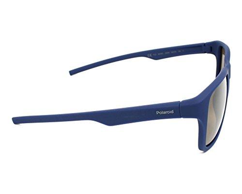 Pz Sonnenbrille Bluette Polaroid 3019 Brown Azul S PLD 6Zxfqwz