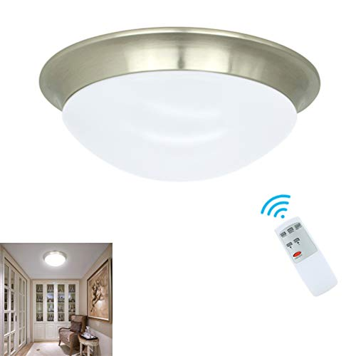 DLLT 24W Dimmable LED Disk Light, Flush Mount Ceiling Light Fixture, Remote Control Surface Mounted Downlight, Brightness Adjustable Round Ceiling Lighting for Bedroom Kitchen Bathroom 11inch (Control Lights Remote With)