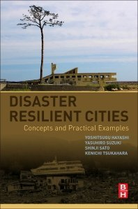 Read Online Disaster Resilient Cities Concepts and Practical Examples ebook