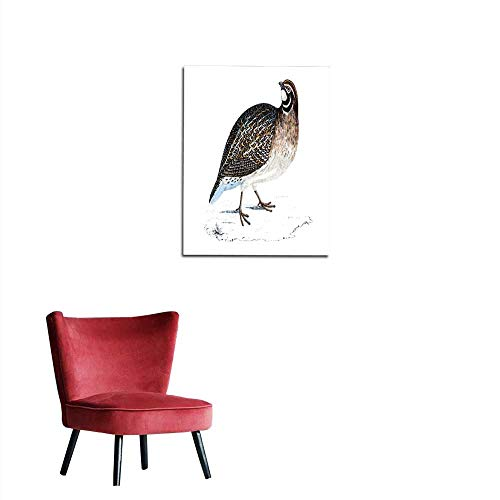 longbuyer Wall Sticker Decals Quail - Hand Coloured Engraving Mural ()