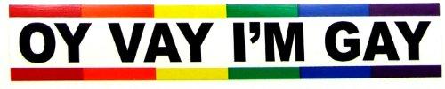 Im Gay Sticker (Sticker - Bumper - Oy Vay I'm Gay)