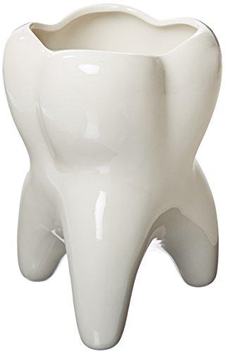 Practicon 9072710 Molar Vase