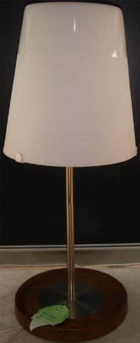 Lite Source LS-21910 Table Lamp with Frost Glass Shades, Steel Finish, 8.5