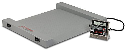 Detecto RW-500 Portable Floor Scale, Electronic, 500 lb. Capacity, 204 Indicator, 40.5'' X 32.5'' by Detecto (Image #1)