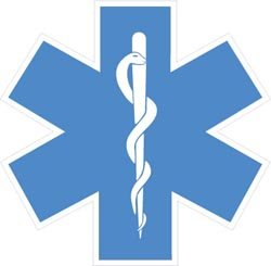 Standard Star of Life Decal With White Border - 2