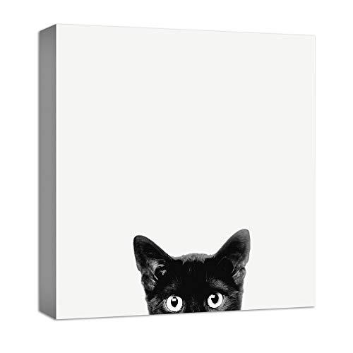 Canvas Cat - 5