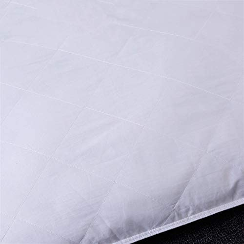 ESUHUANG Soie doublée d'oreiller en Coton Lavable Couvert for Une Hauteur de Couchage 16cm Home Textile (Size : 40x60cm Height 16cm)