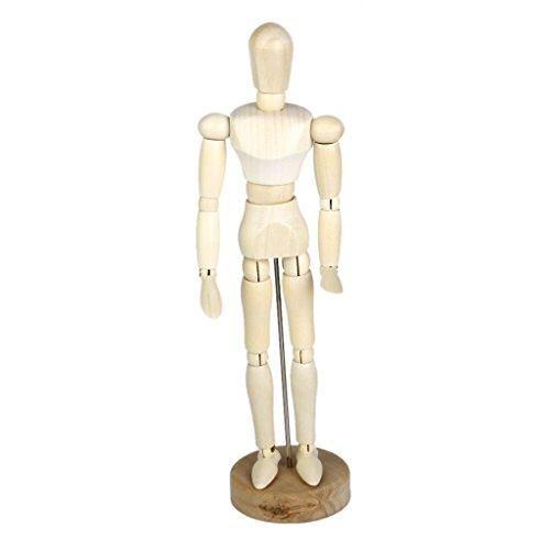 木製人体 人体模型 モデル知育玩具 幼児教育 雑貨 おもちゃ 道具 (20cm)