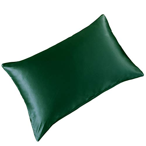 THXSILK Silk Pillowcase for Hair and Skin-Mulberry Silk Pillow Cover- with Hidden Zipper-19 Momme Natural Mulberry Silk on Both Sides - Standard Size 20