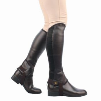 Saxon Equileather Adult Half Chaps M - Half Adults Chaps