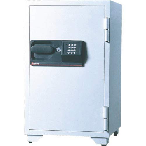 (Sentry S6770 3-Cubic Feet Commercial Electronic/Tubular Key Fire Safe, 342-Pound, Gray )