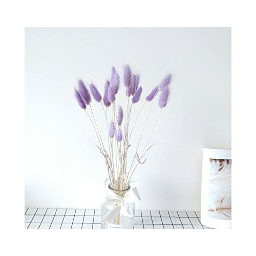 (paasionous 20Pcs Natural Dried Flowers White Artificial Flowers Colorful Fake Rabbit Tail Grass Foxtail Long Bunches,Purple )