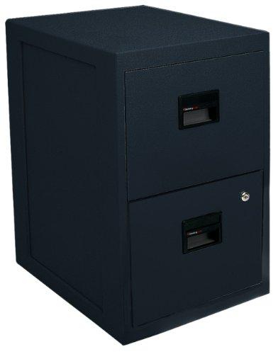 High Security Filing Cabinets (SentrySafe Fire-Safe 2-Drawer Insulated Vertical File, Black )