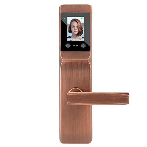 Face Recognition Keyless Smart Door Lock,Digital Electronic Biometric Smart Locks,Intelligent Access Card Unlock + Palm Print Unlock,7-in-1 Unlocking Method,Brass