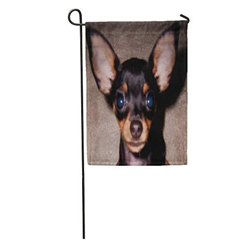 yyoungsell Garden Flags Min Mini Pinscher Pin Doberman Toy Dog Outdoor Decorative House Yard Flag 28x40