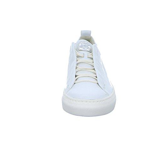 Scarpe Green 4554 Stringate argento 112 Bianco Paul Donna UtqOwZSUx