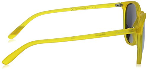 Yellow PLD 6003 N Greymir Sonnenbrille Trns Jaune Polaroid YZSRwf