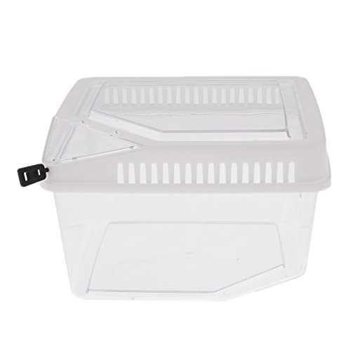 Baoblaze Strong Plastic Reptile Lizard Tarantula Turtle Tortoise Breeding Box Feeding Hatching Rearing Case Container Aquarium Tank - White by Baoblaze