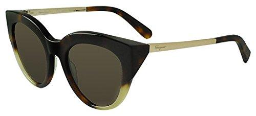 Sunglasses FERRAGAMO SF 855 S 276 ()