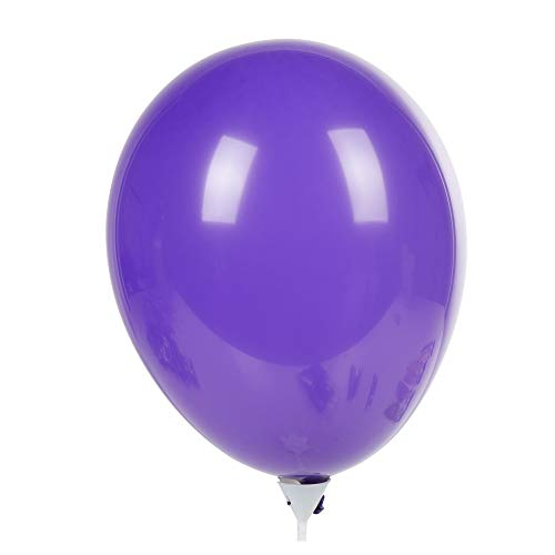 Party pack balloons for kids party (Best Way To Get Rid Of Fruit Flies In House)