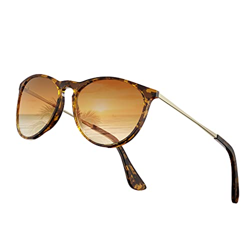 VOFO VISION Vintage Round Sunglasses for Women Men Classic Retro, Fashion Mirrored Designer Style Premium Nylon Lens VF7102
