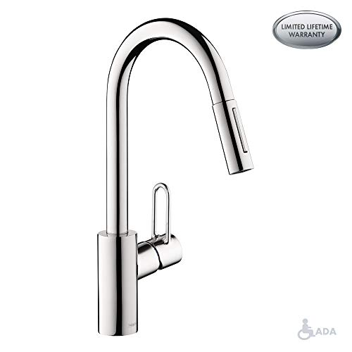Hansgrohe 04701005 Talis Loop Kitchen Faucet, 16.1