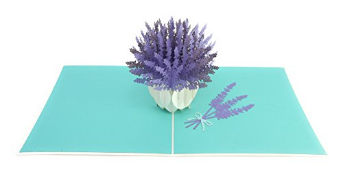 PopLife French Lavender Pop Up Mothers Day Card - Happy Anniversary Pop Up Birthday Card for Mom - for Daughter, for Grandaughter, for Wife, for Sister, for Grandma, Get Well, Sympathy, Thank You