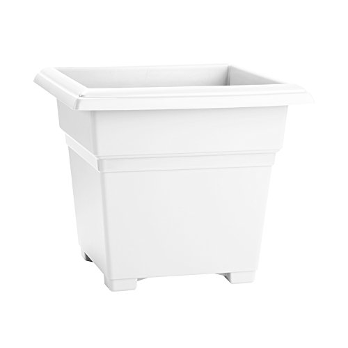 Novelty Countryside Square Tub Planter, White, 18-Inch