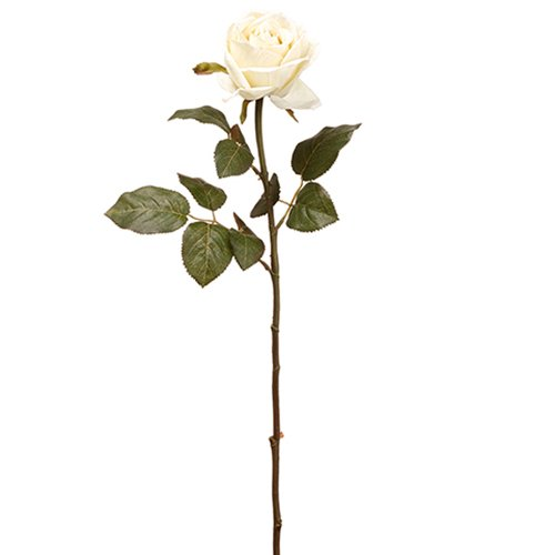 26'' Silk Rose Flower Spray -Cream (pack of 24) by SilksAreForever