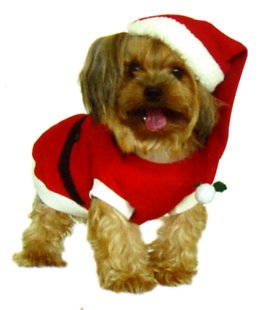 Dogs and Co Christmas Fancy Dress Costumes for Dogs Santa Outfit 14-inch/  sc 1 st  Amazon UK & Dogs and Co Christmas Fancy Dress Costumes for Dogs Santa Outfit 14 ...