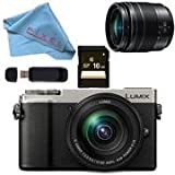 Panasonic Lumix DC-GX9 Mirrorless Micro Four Thirds Digital Camera with 12-60mm Lens (Silver) Basic Bundle