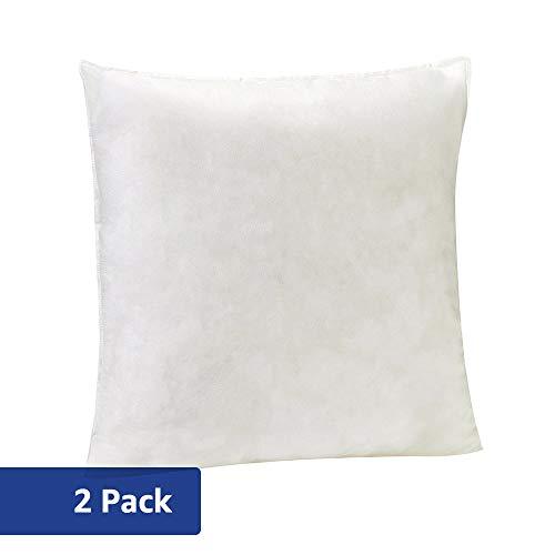 AmazonBasics Pillow Insert - 26-Inch Square, 2-Pack
