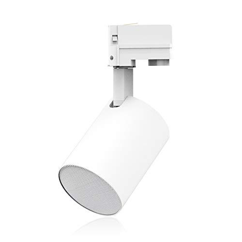 (Ecler TRAIL103 3 Inch Rail Mount Lamp Style Loudspeaker, White)