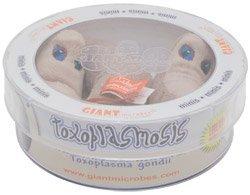 Giant Microbes Toxoplasmosis (Toxoplasma gondii) petri dish