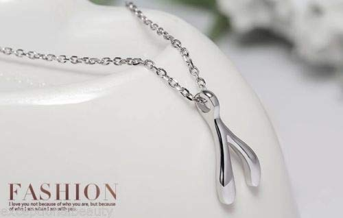 exceptionalbeauty Wishbone Silver Floating Pendant Chain Clavicle Necklace The Heirs Korean TV (Necklace Heirs Wishbone)
