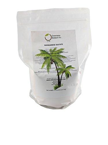 Monohydrate Sulfate - Manganese Sulfate Monohydrate Powder Fertilizer 100%