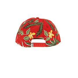 29199a076d0 Vans Broloha Surf Snapback Red Hawaiian - One Size UK  Amazon.co.uk  Shoes    Bags