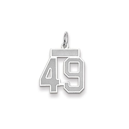 (Best Birthday Gift 14k WG Small Satin Number 49 Charm)