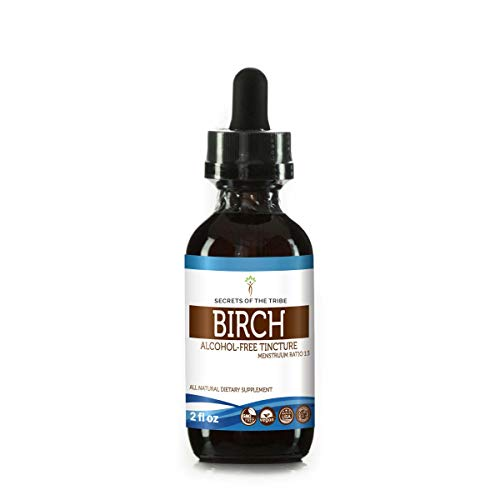 Birch Alcohol-Free Liquid Extract, Organic Birch (Betula Pendula) Dried Leaf Tincture Supplement (2 FL ()