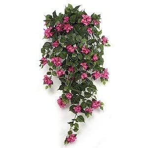 42 Inch Hanging Bougainvillea Bush - Signature Foliage White, Cream 1
