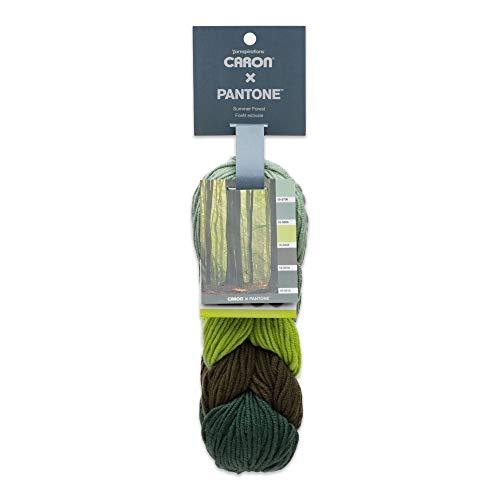 Caron x Pantone Acrylic & Merino Wool Blend Yarn •• 5 Coordinated Colors in 1 Braid (Summer Forest 291101-01015) - Summer Braids