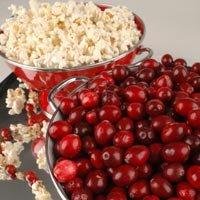 Cranberry Kettle Corn Candle/Soap Fragrance Oil 1oz