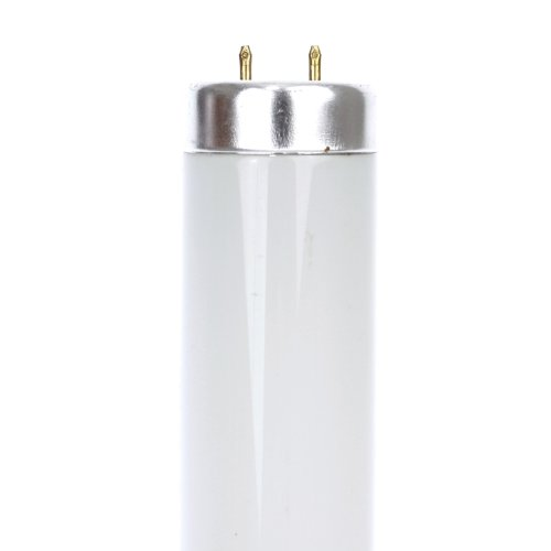 Base Cool White Fluorescent - 9